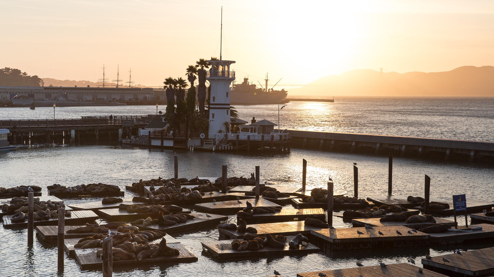 San Francisco Through The Lens Of 500px Photographers