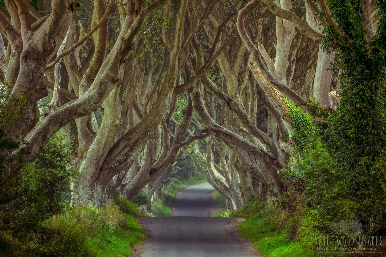 The Fantastic Real-Life Filming Locations Of Game Of Thrones