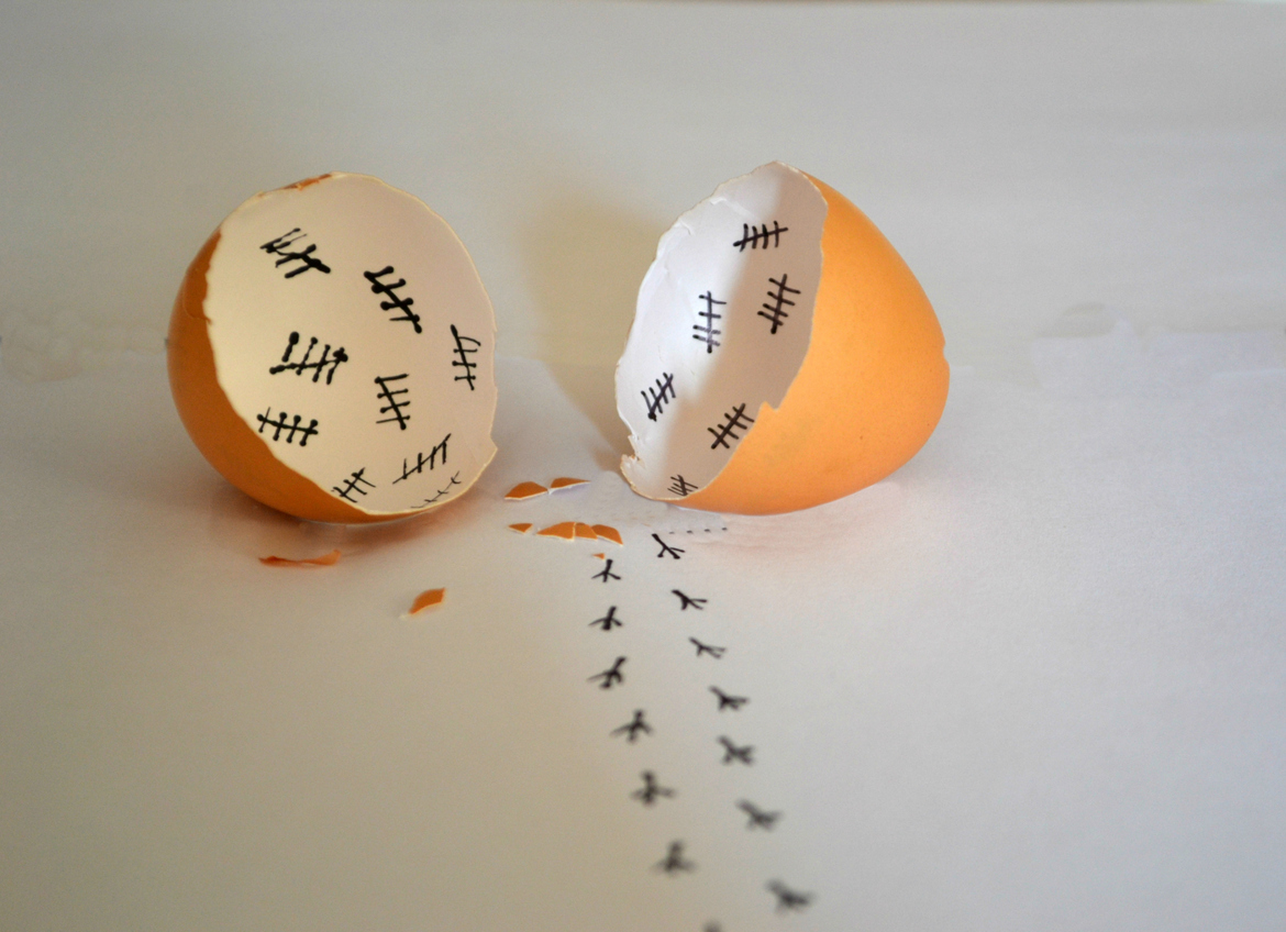 20 Creative Photos of Eggs that Will Make You Giggle