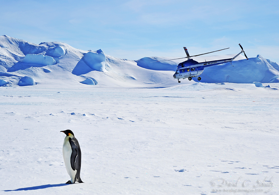 Snow Hill Island 2