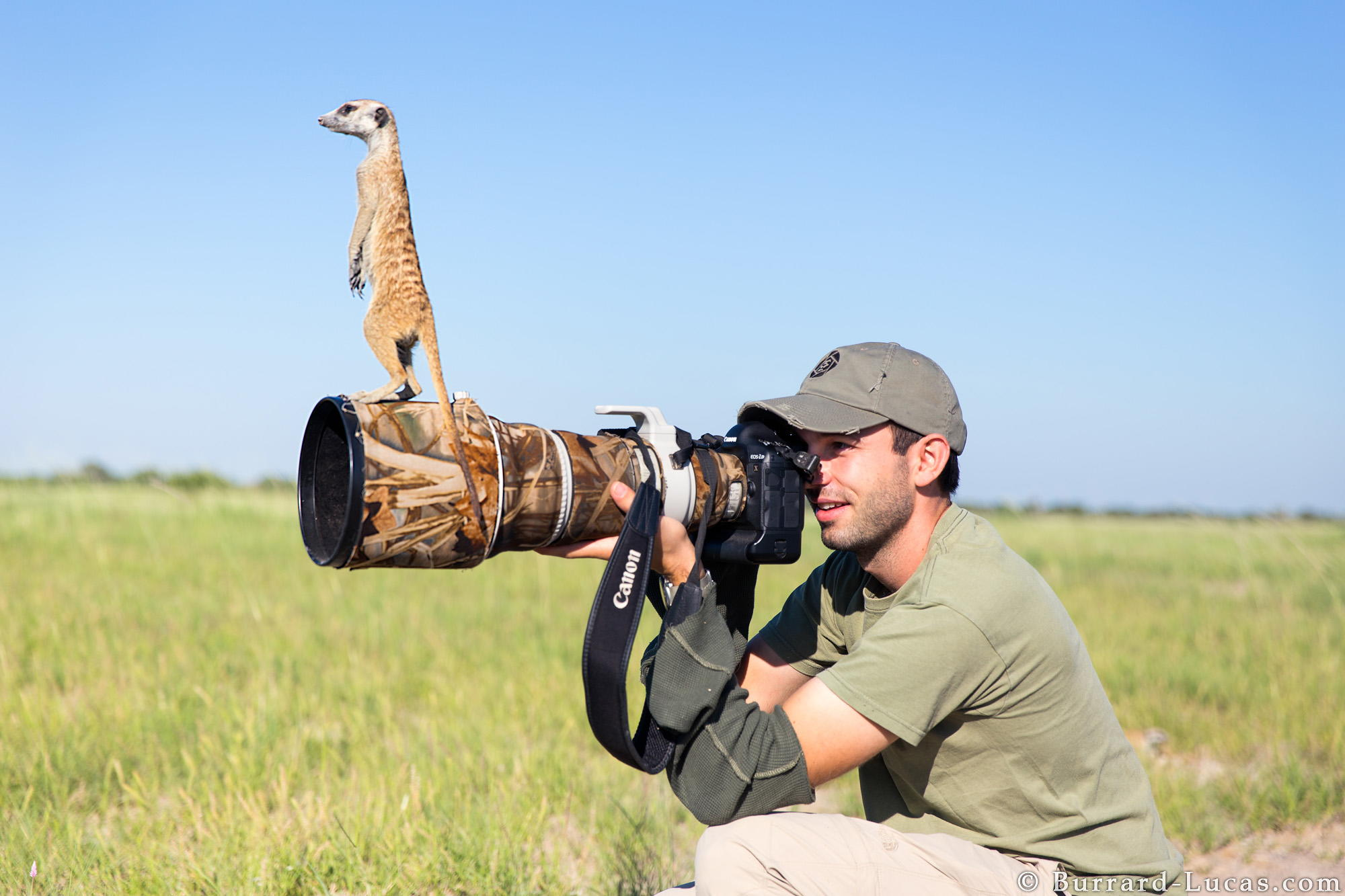 A Pro Shares His Go-To Gear For Wildlife Photography