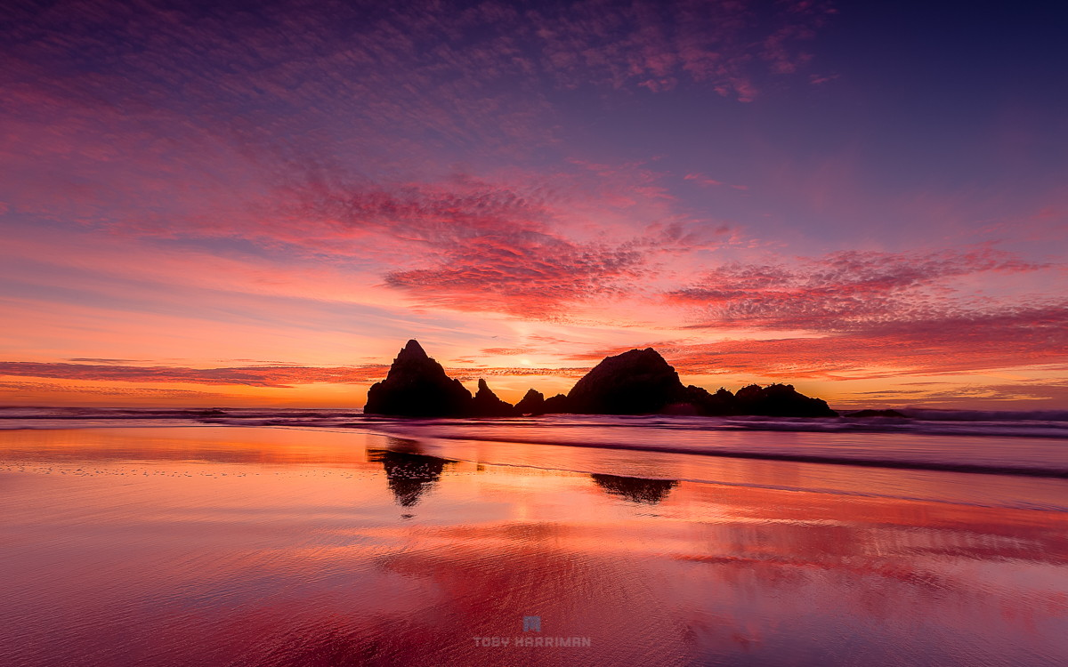500px Interviews Pro Photographer Toby Harriman On The New Lytro ILLUM