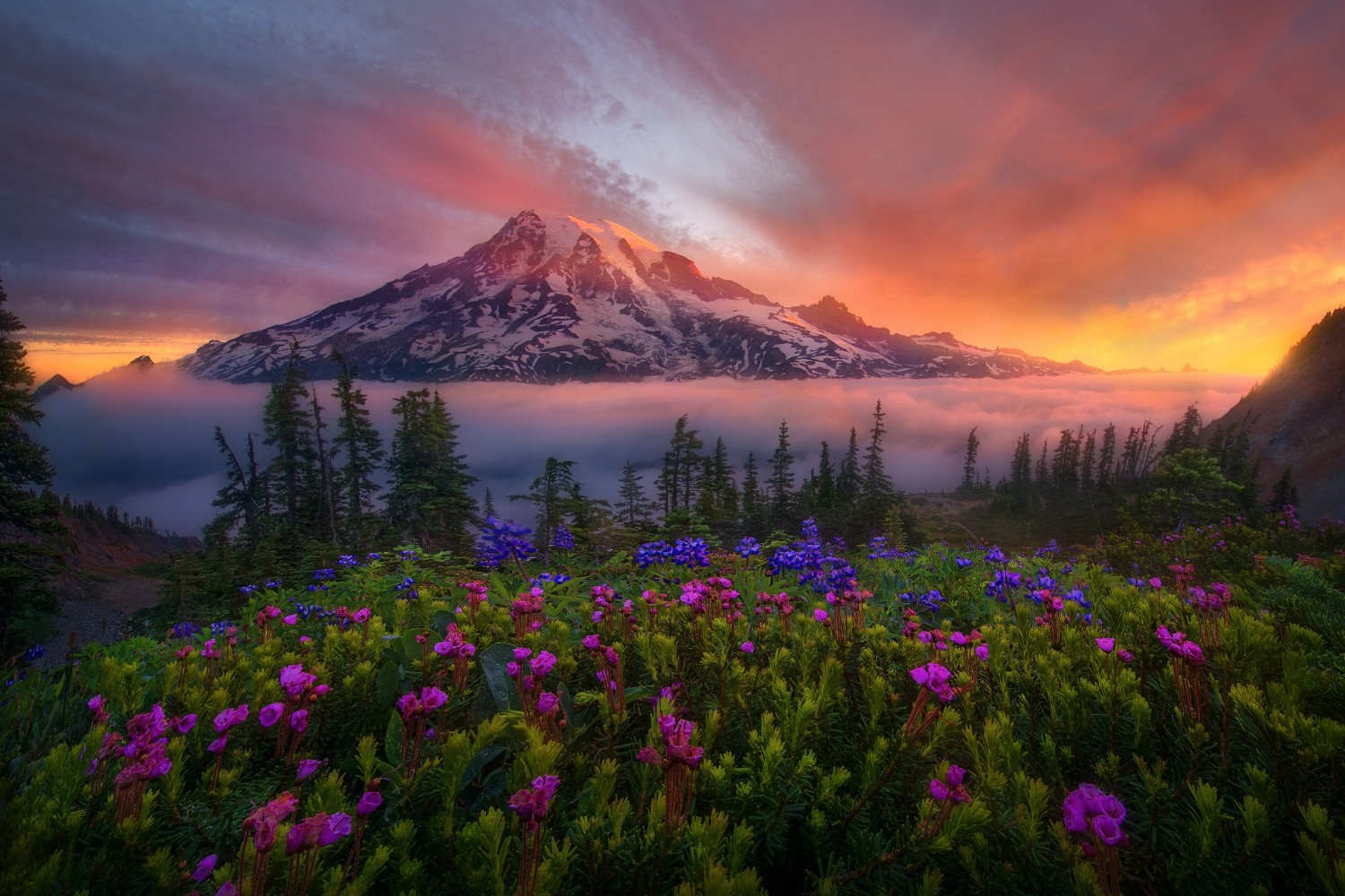 A Day In The Life Of Landscape Photographer Marc Adamus