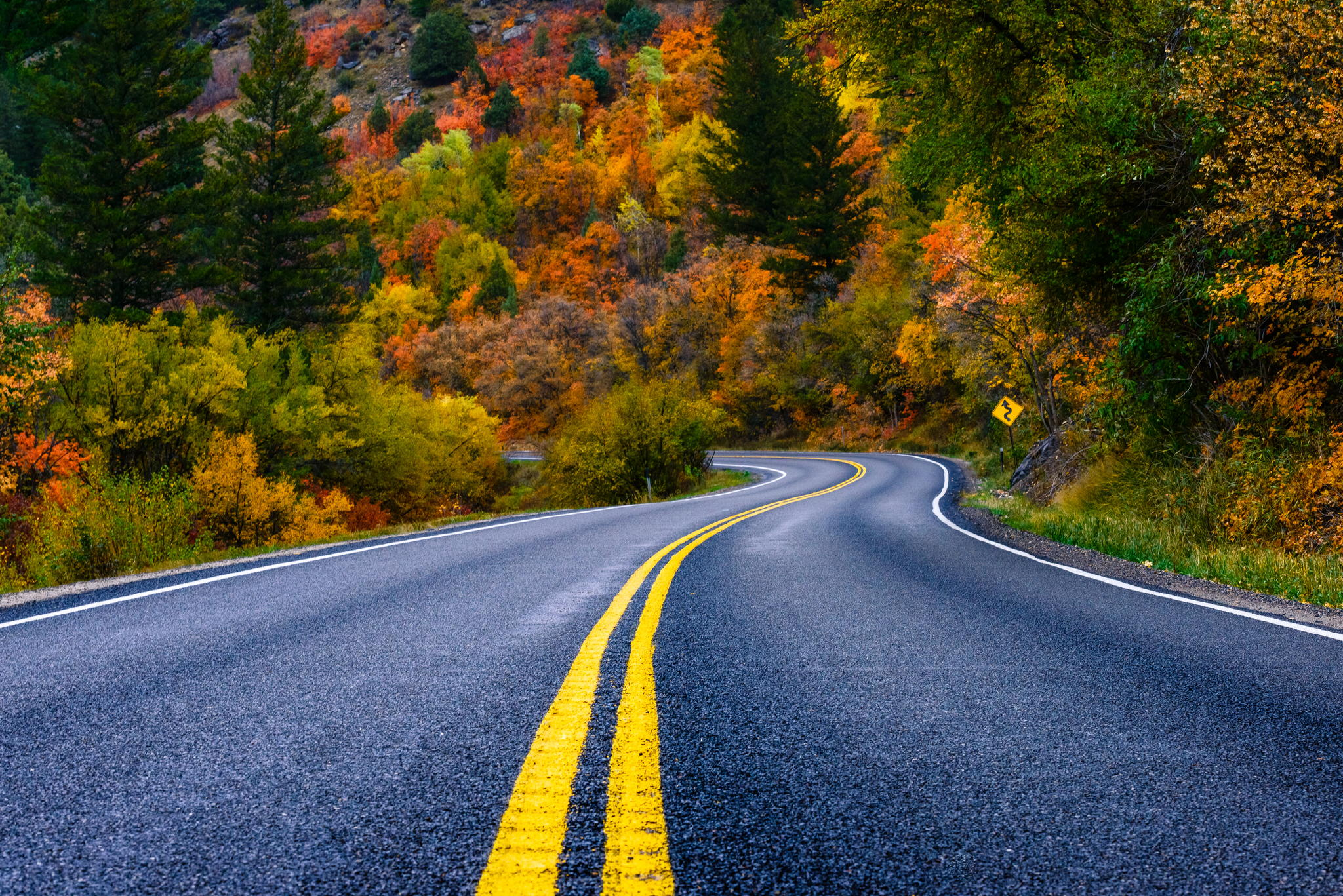Go On An Epic Northwest USA Road Trip With 500px