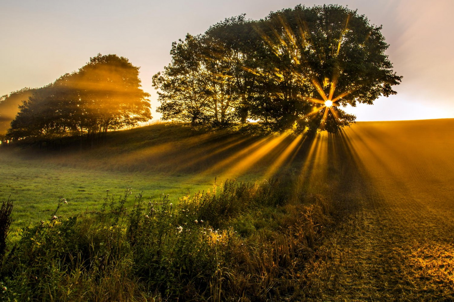 Contest: 20 Winning Golden Hour Photos. Plus, A New Theme!