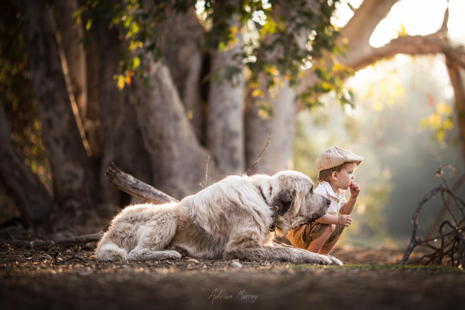 500px ISO Beautiful Photography Incredible StoriesTips For Capturing Magical Portraits Of