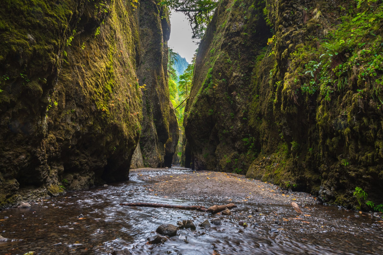 500px Road Trip Day 3: Oneonta Gorge, Multnomah Falls, Coasts Of Oregon