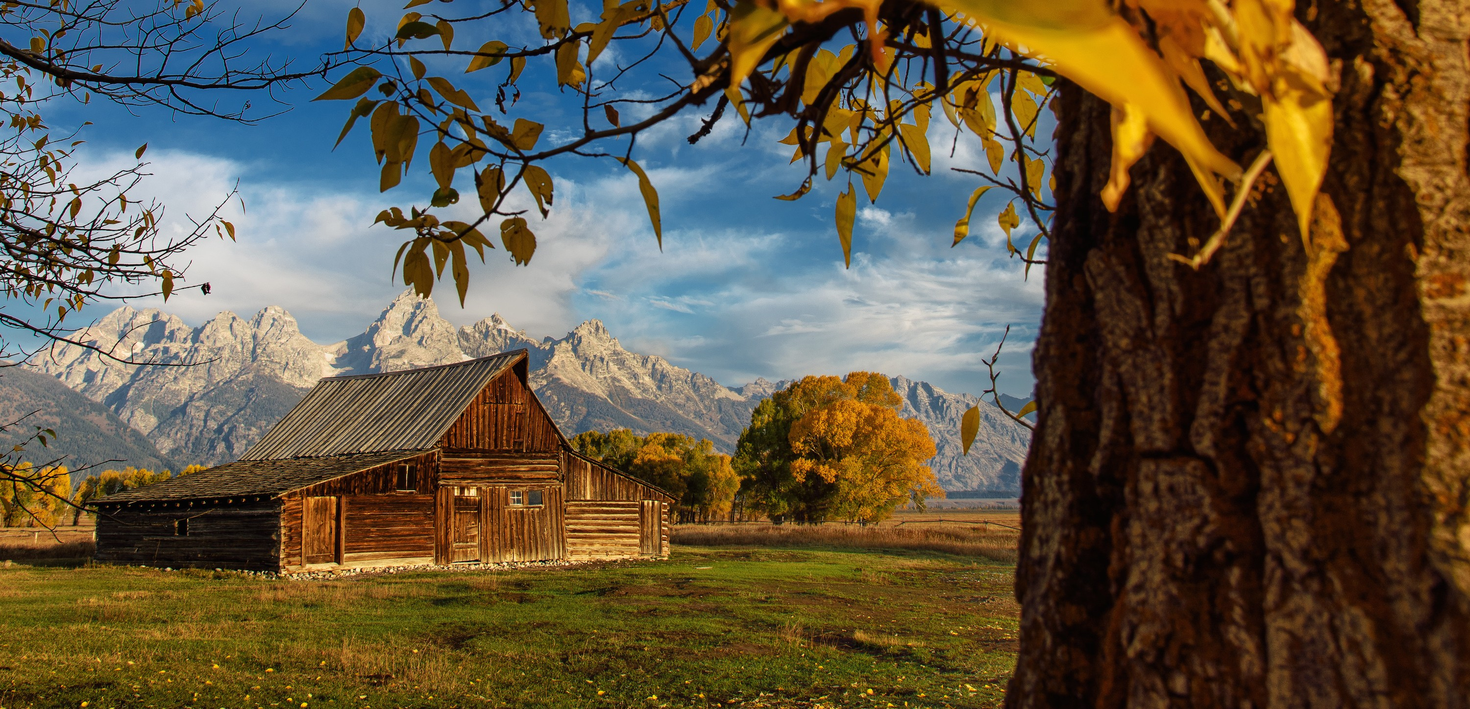 500px Road Trip Photo Diary Days 8-12: Yellowstone National Park, Grand Tetons & Bisons