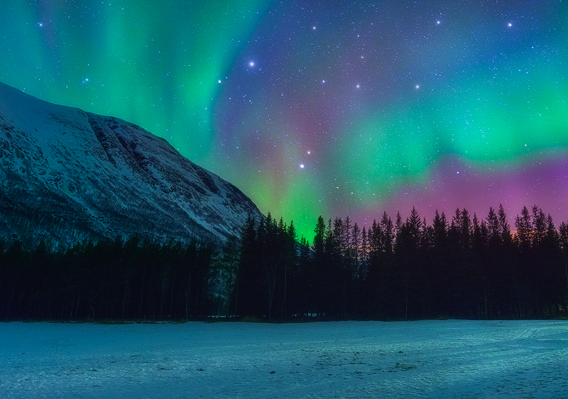 Northern Lights In Norway Good Ideas