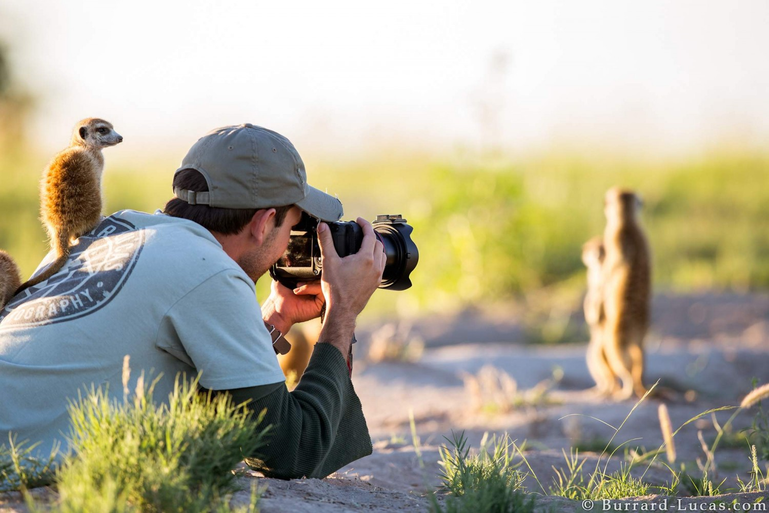 10 Wildlife Photographers You Should Follow on 500px Right Now