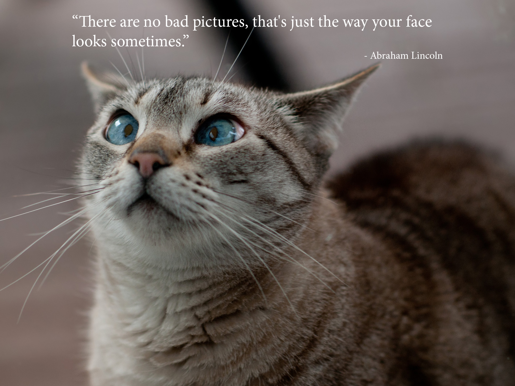 Quotes Funny 500Px Blog » The Passionate Photographer Community» 40