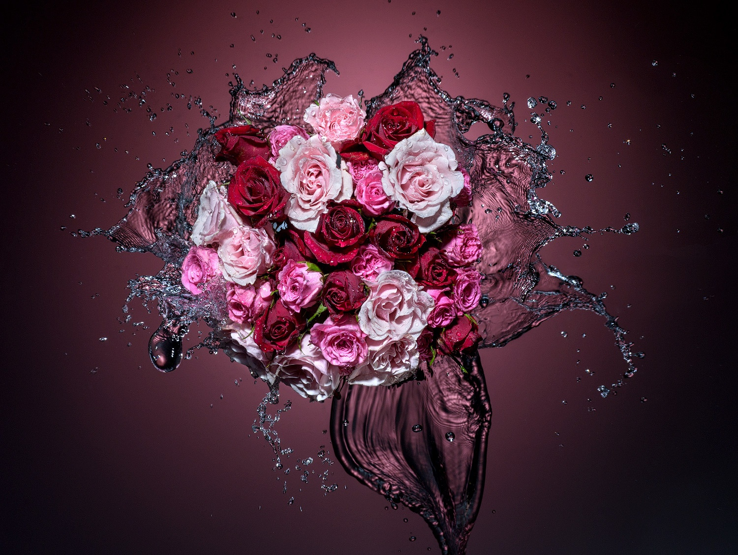 Splashing Roses: Behind the Scenes of a High-Speed Liquid Shot
