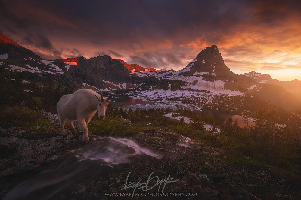 A 500px Photo Tour of Glacier National Park