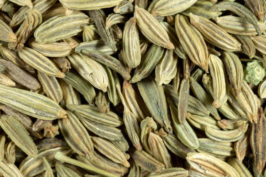 Fennel seeds macro