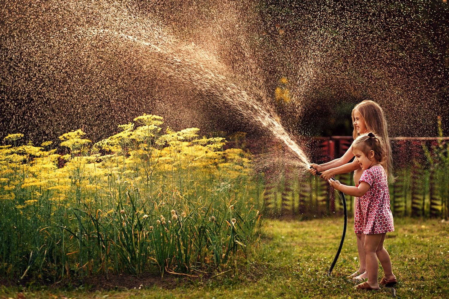 Mom Photographer Captures the Simple Joys of Childhood