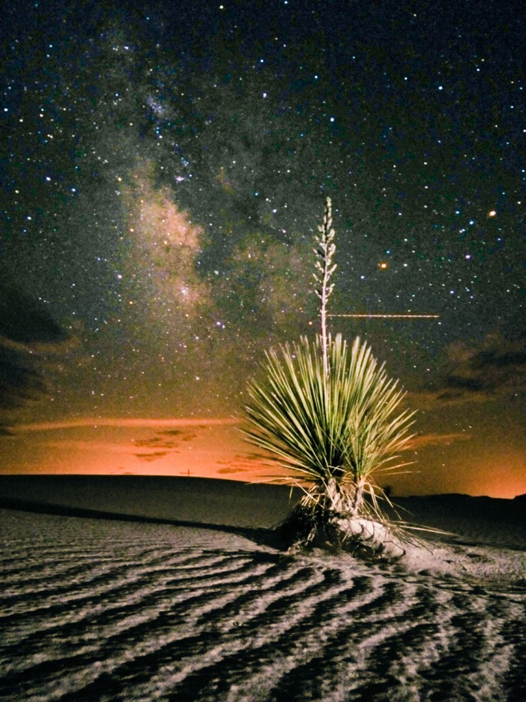 Yucca and the Milky Way, White Sands National Monument, NM, OnePlus One, 30s, f/2, ISO 3200