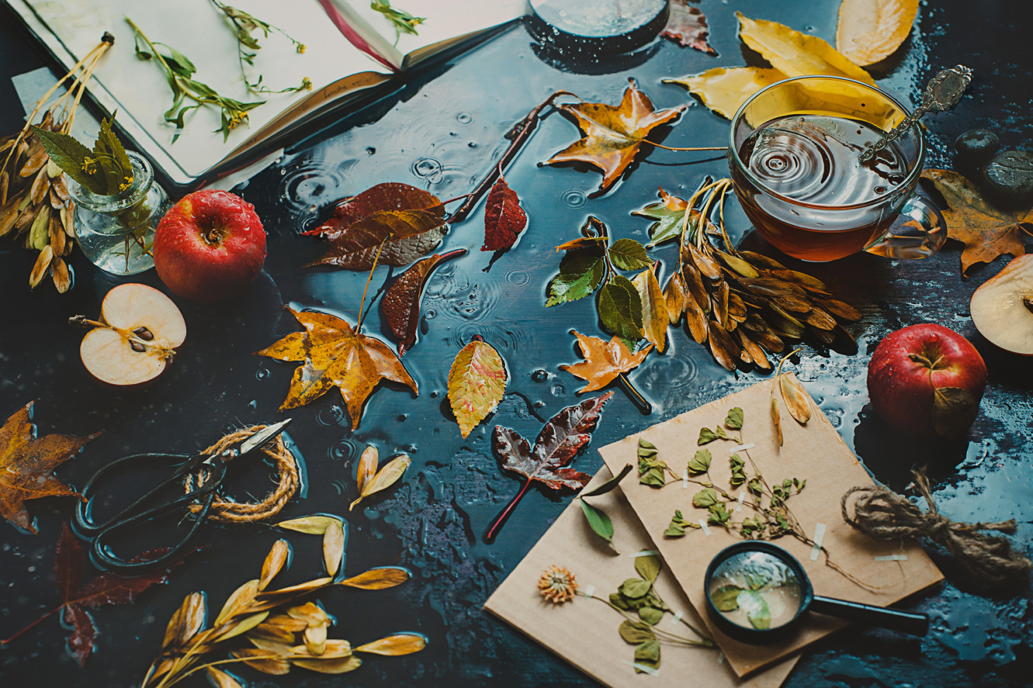 Tutorial: How to Make it Rain on Your Still Life in the Studio