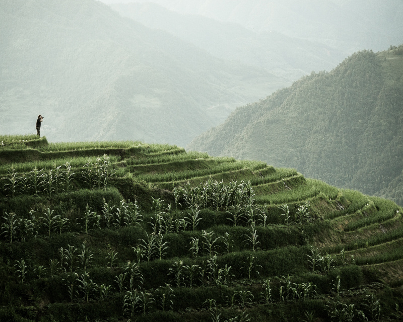 Landscape photographer taking photo of rice terraces in longsheng guangxi china