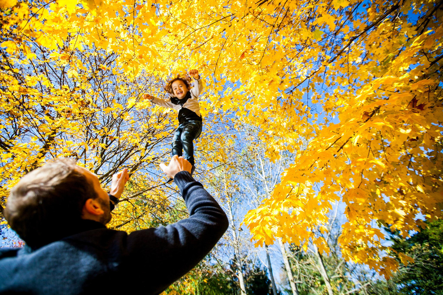27 Photos that Will Help You Fall in Love with Fall