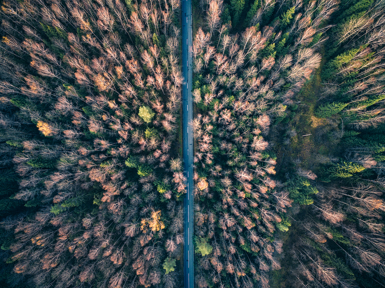500px Blog » 10 Tips That'll Take Your Drone Photography to