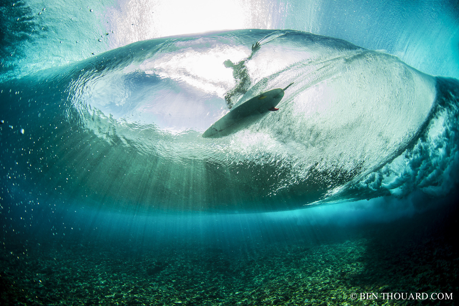 Best of 2015: Top 10 Underwater Photos
