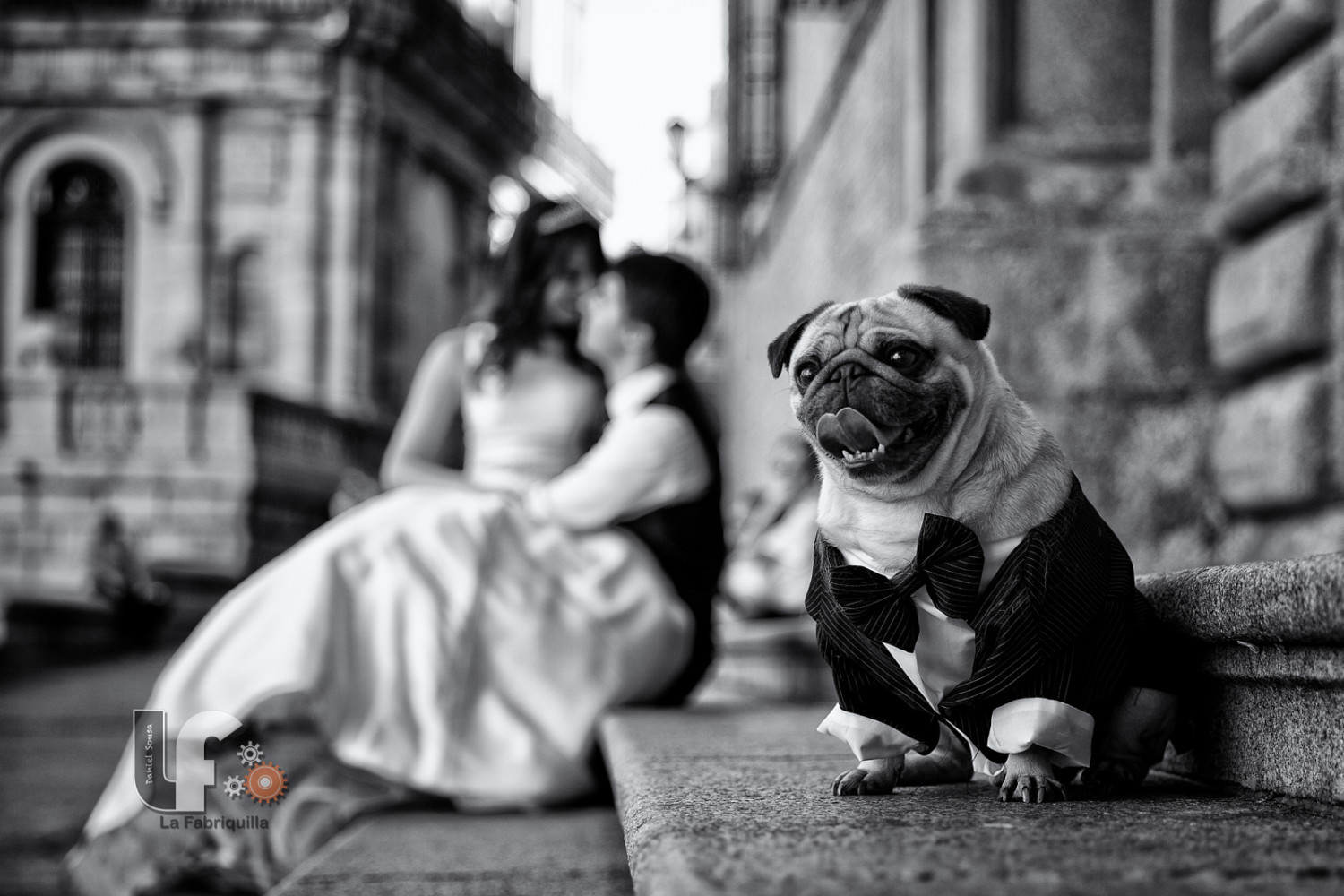 Best of 2015: Top 10 Wedding Photos