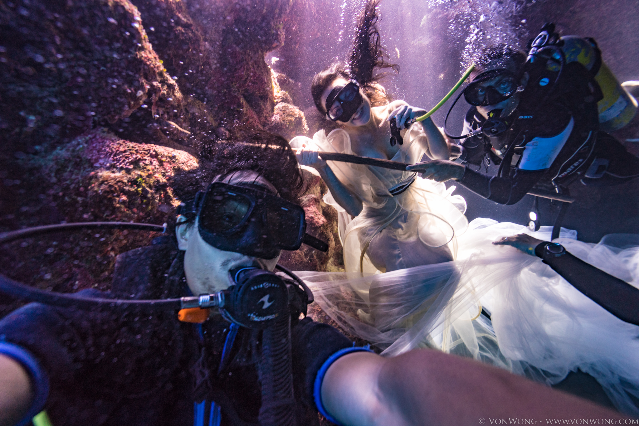 BTS_SharkShepherd_VonWong_7