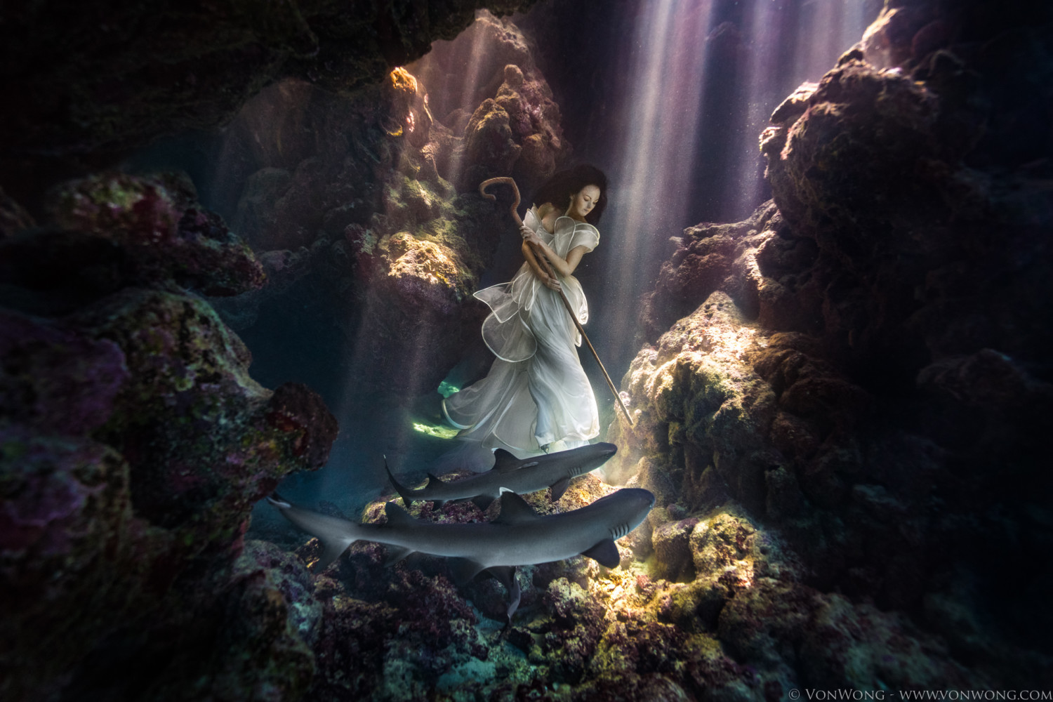 Von Wong Ties Model Down with Sharks for Breathtaking Photo Shoot