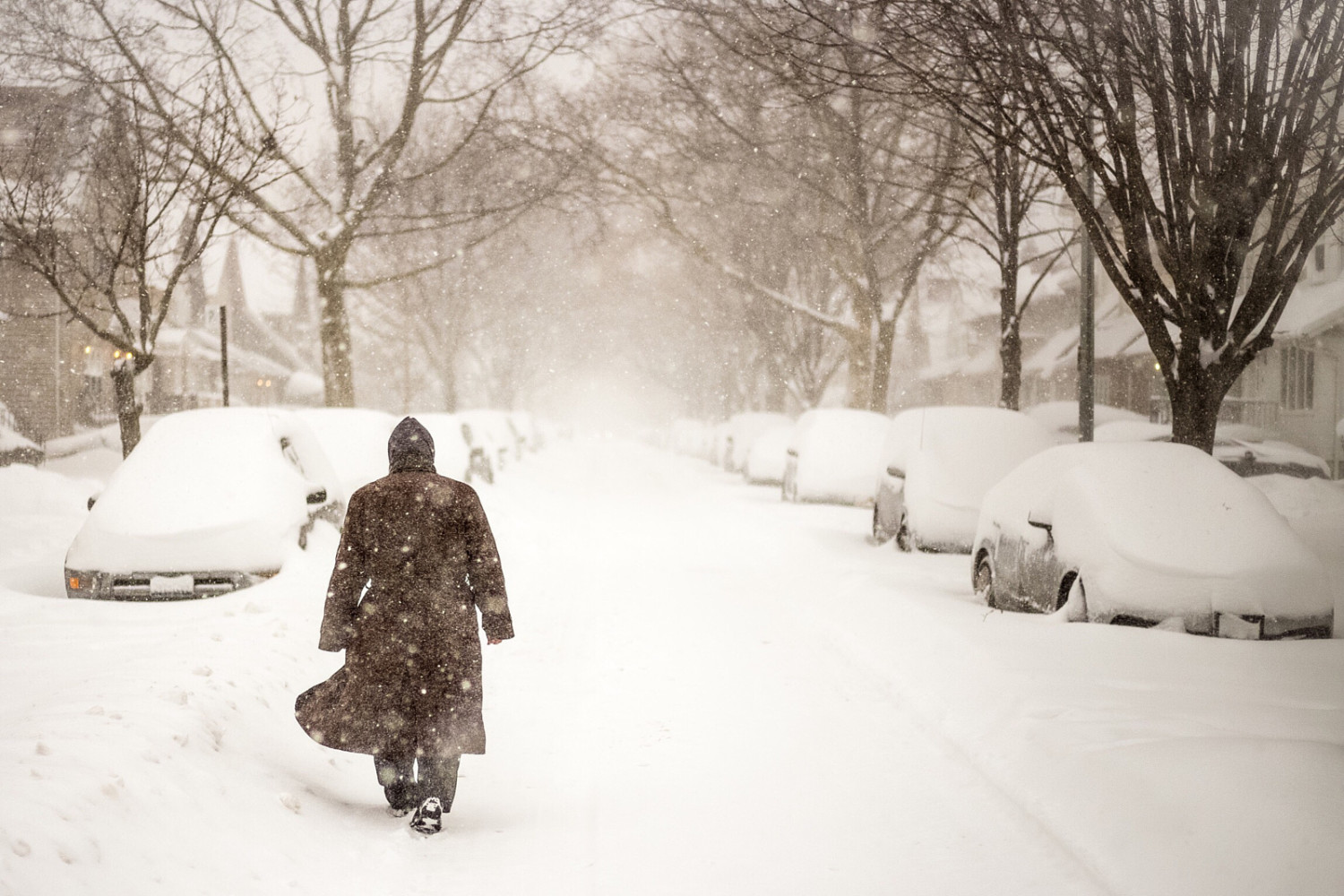 35 Photos of #Blizzard2016 Burying New York City