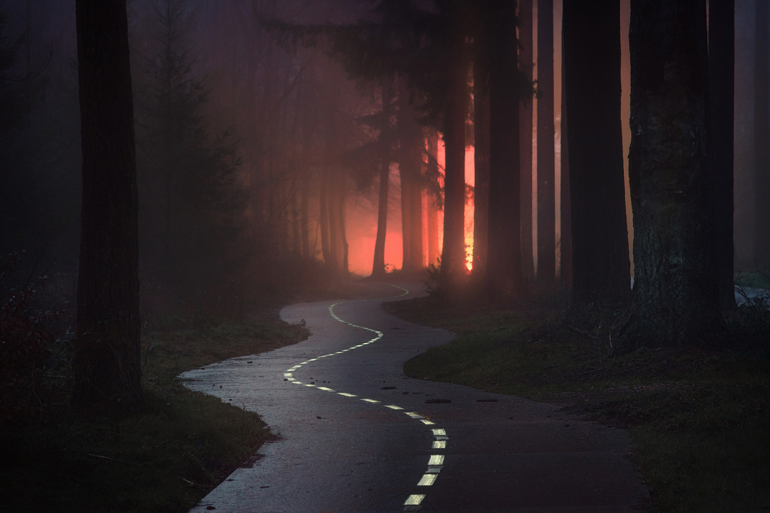 Turn Around: The Making of this Mysterious Misty Photo