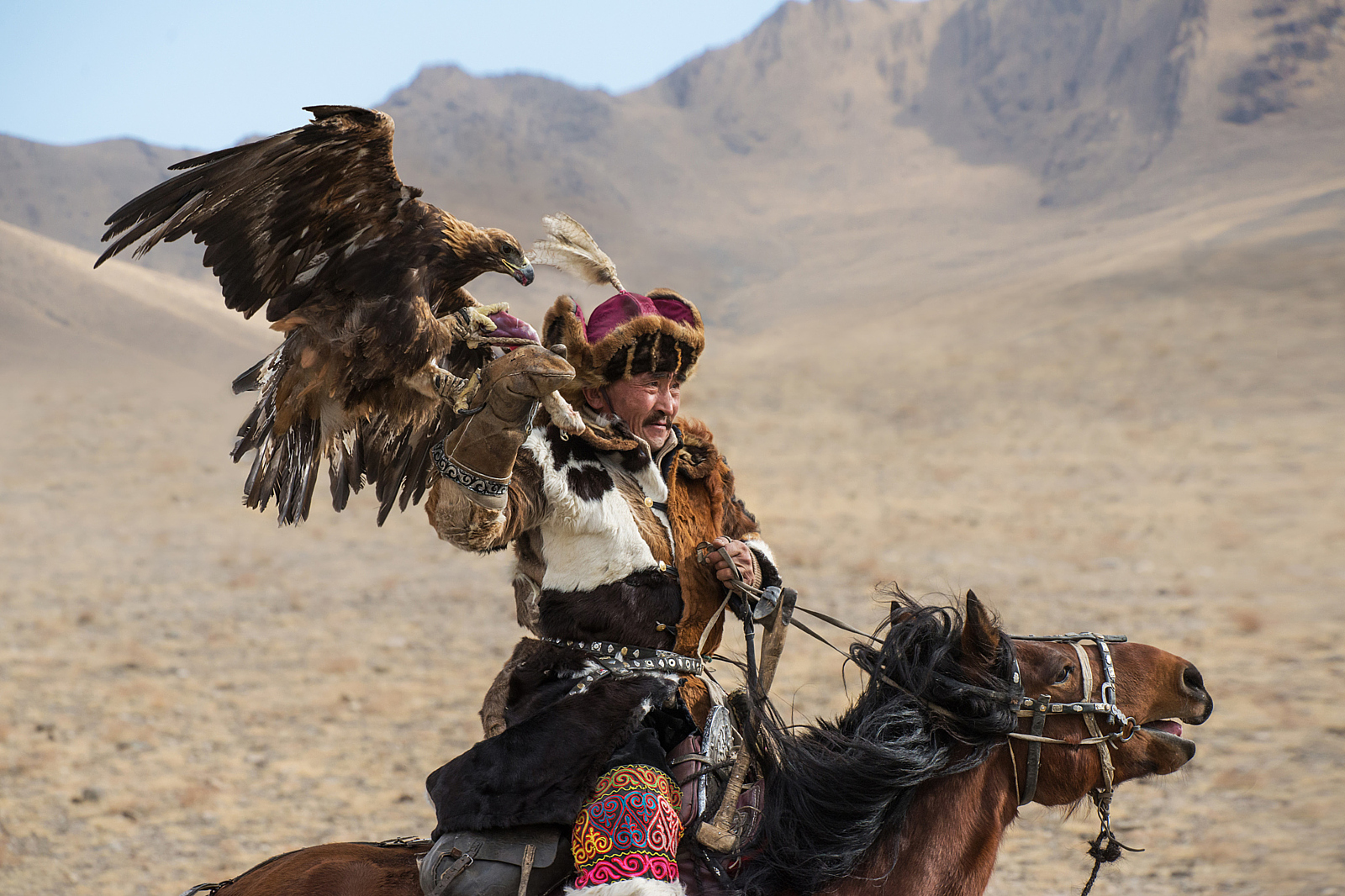 Amazing Photos of Mongolia's Eagle Hunters