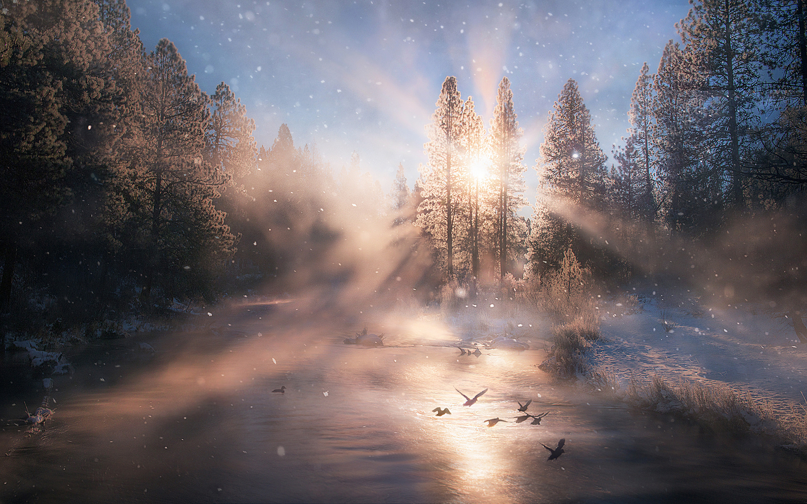 Top 20 Landscape Photos on 500px So Far This Year