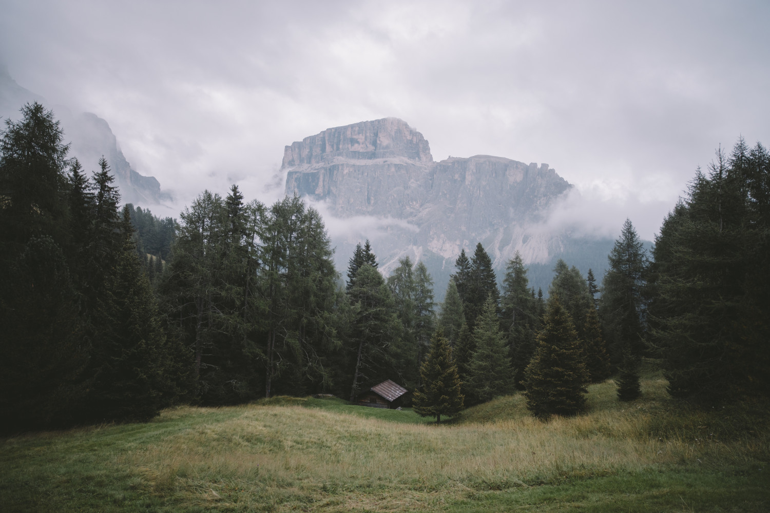 Featured in Alex Strohl's Alternative Living