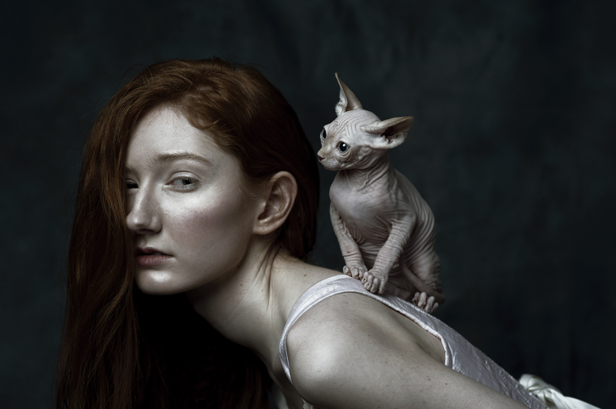 If Cat Ladies Were Renaissance Portraits