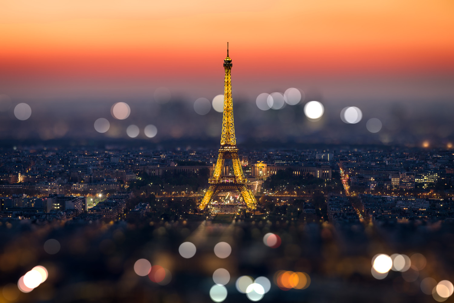 30+ Beautiful Bokeh Images That Capture Your Imagination