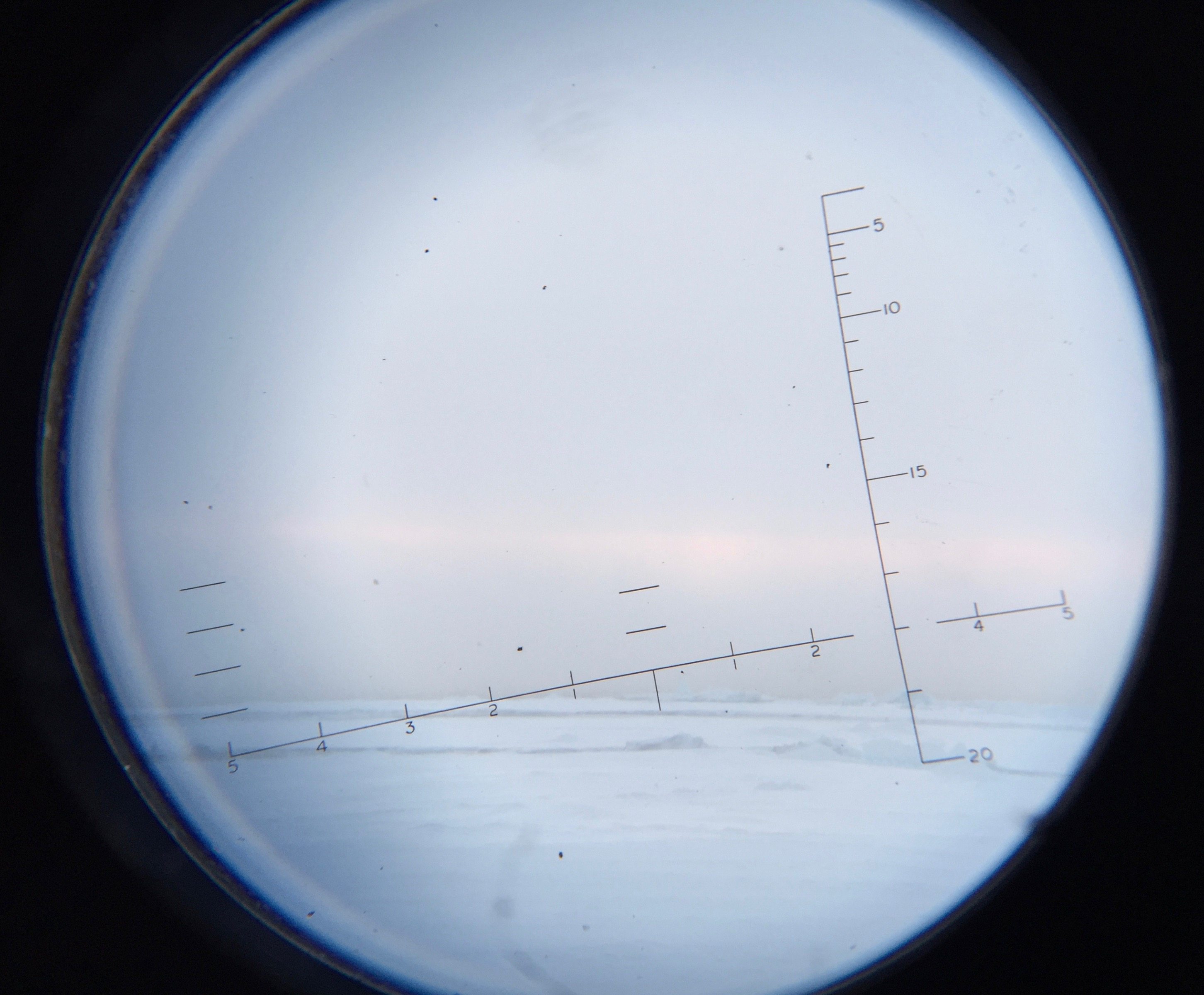 view through the binoculars
