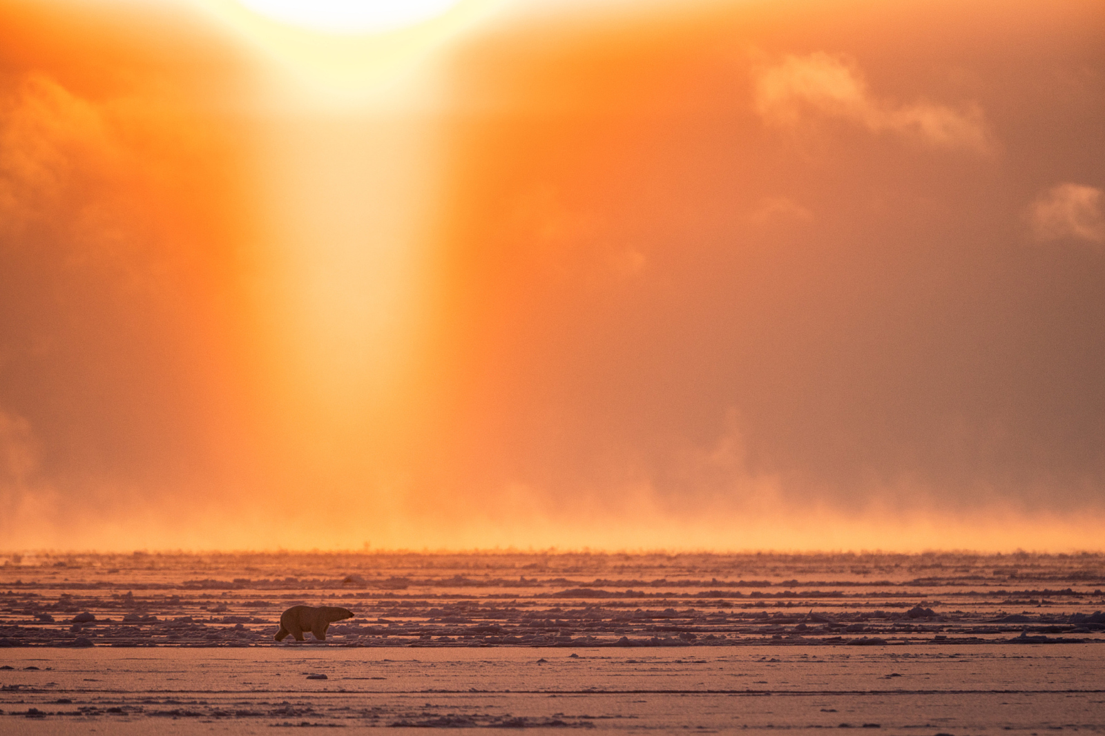 A Day in the Life of Photographer & Arctic Explorer Josh Anon