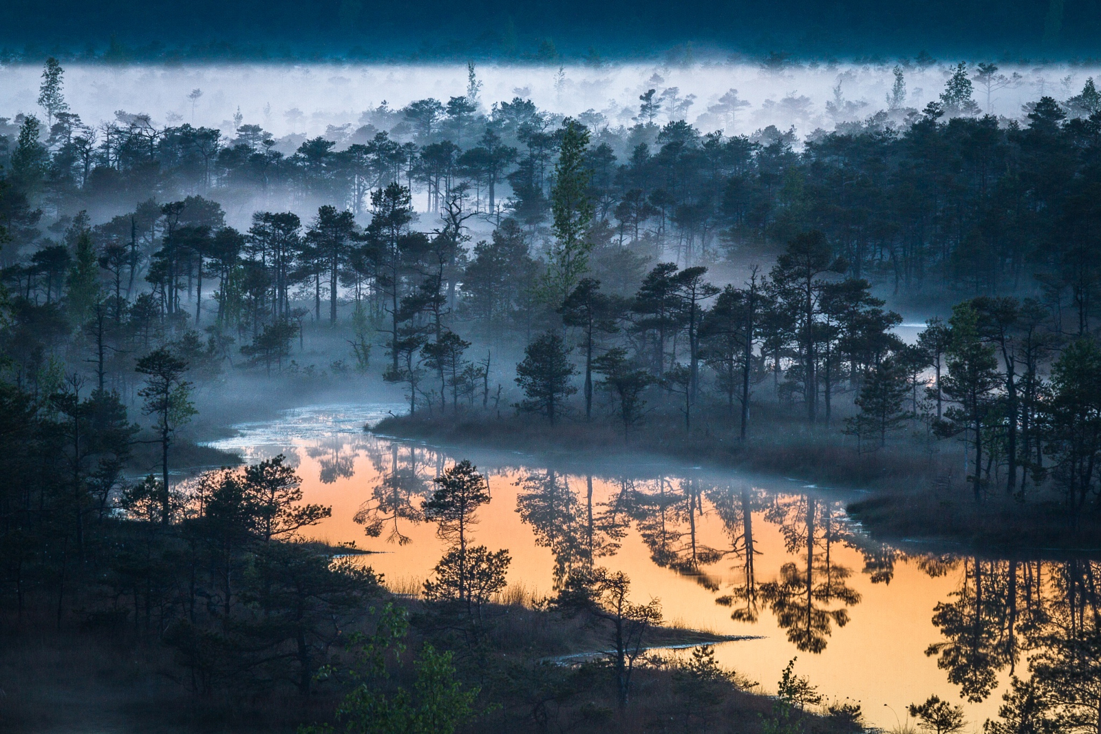 See the 3 Spectacular Winners of Our Local Landscapes Quest