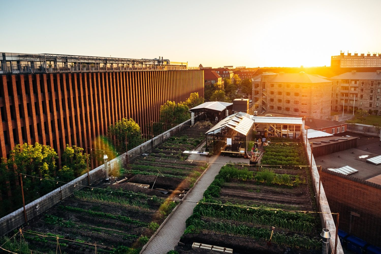 Living Green: 10 Fresh Photos