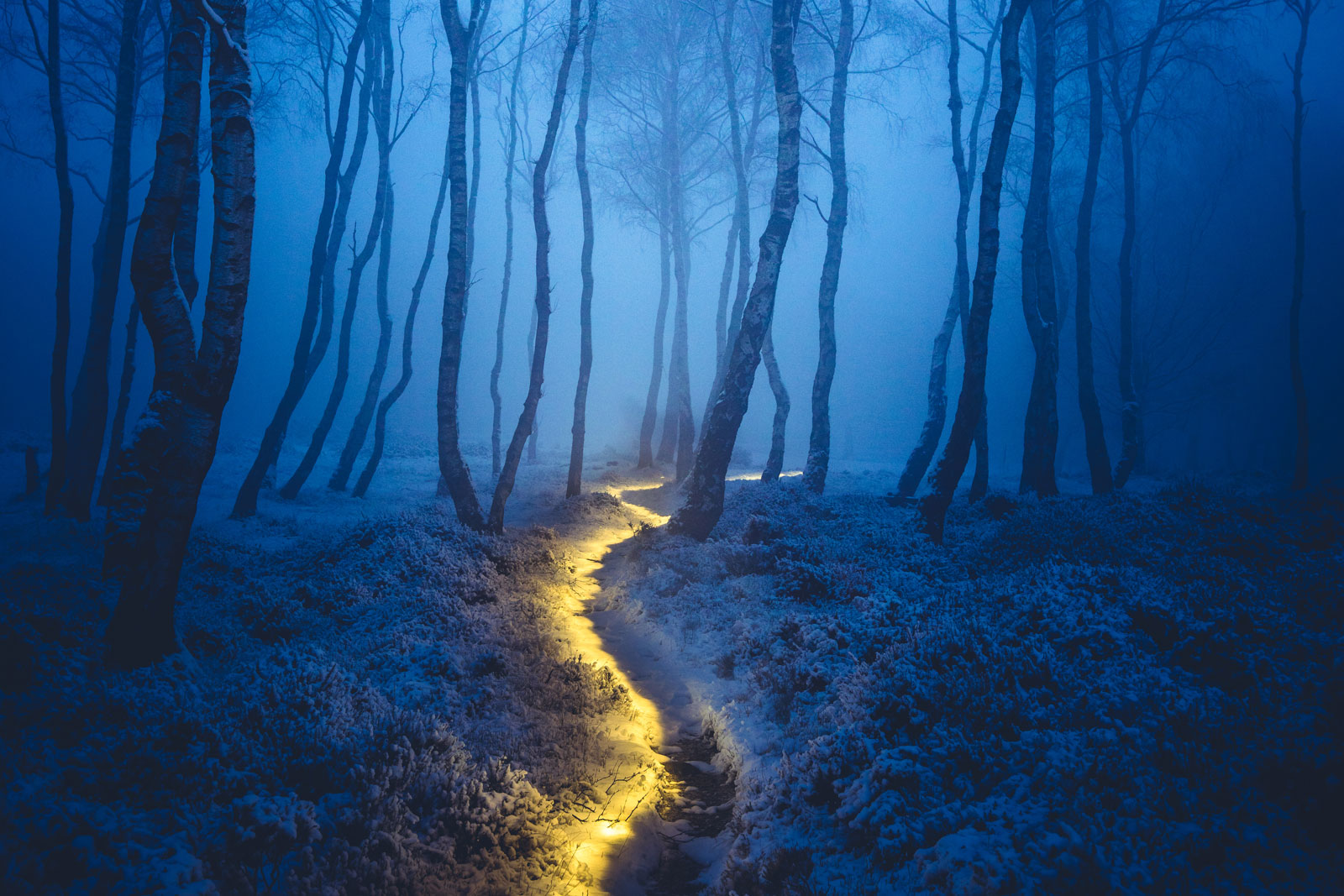 3 Magical Photos that Capture Light at Night