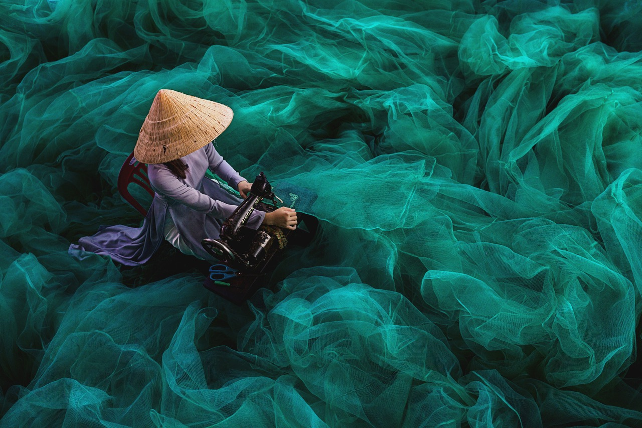 Mastering the Art of Composition: 11 Photos at the Top of the Class