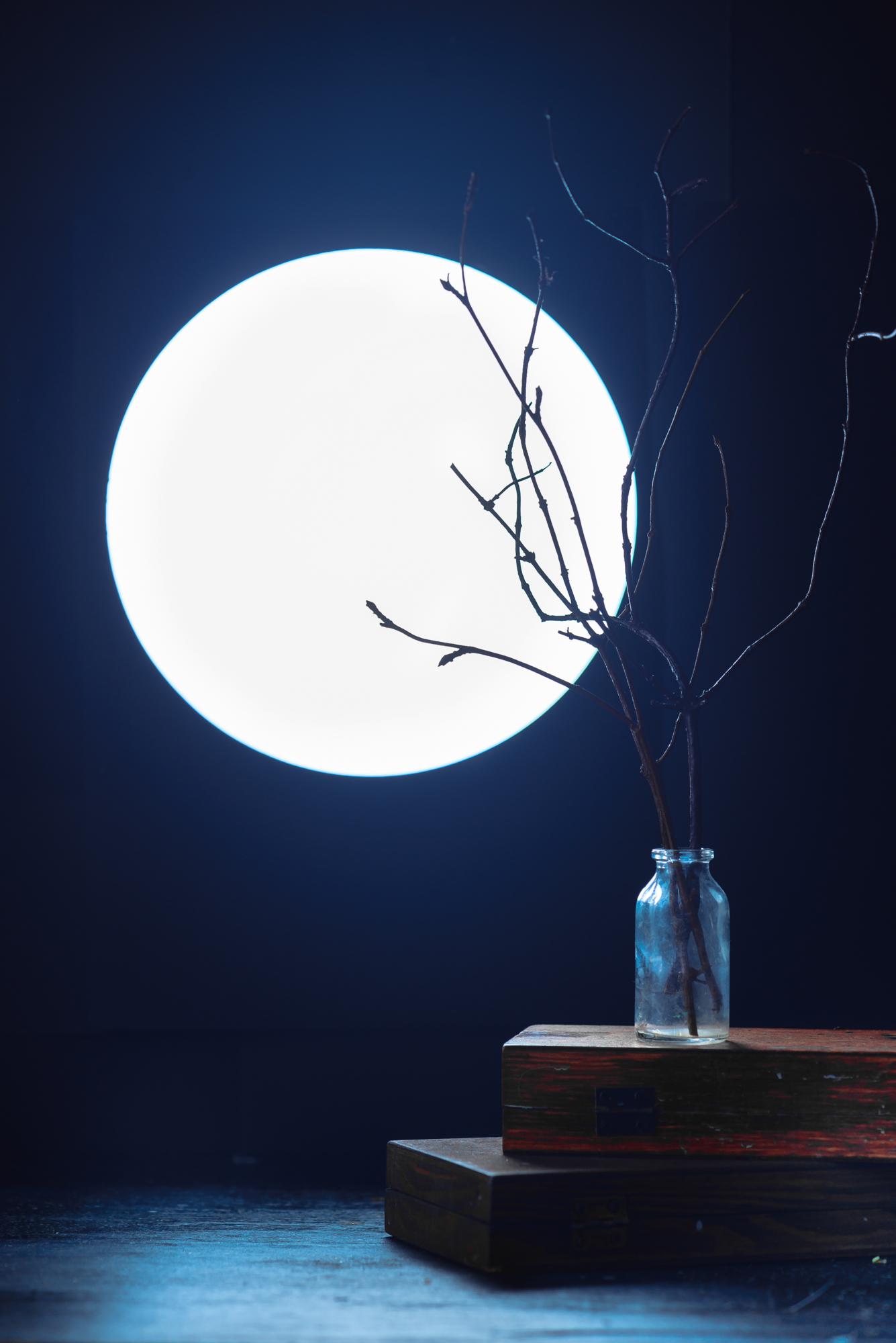 500px_blog_Halloween_still_life_moon