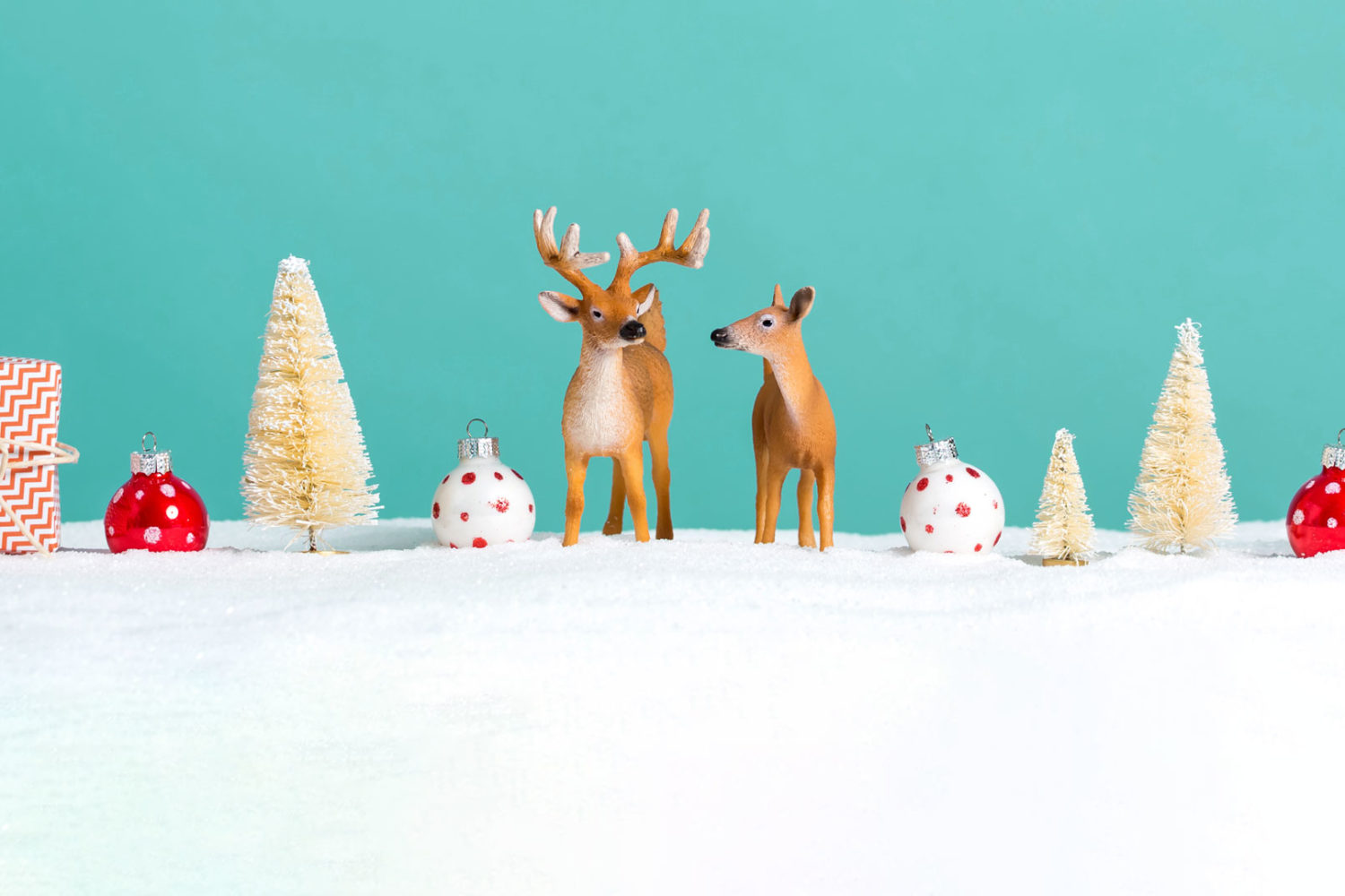 500px presents our second annual Questmas challenge