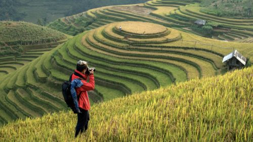 Photographers taking pictures scenery rice terraces in Vietnam.