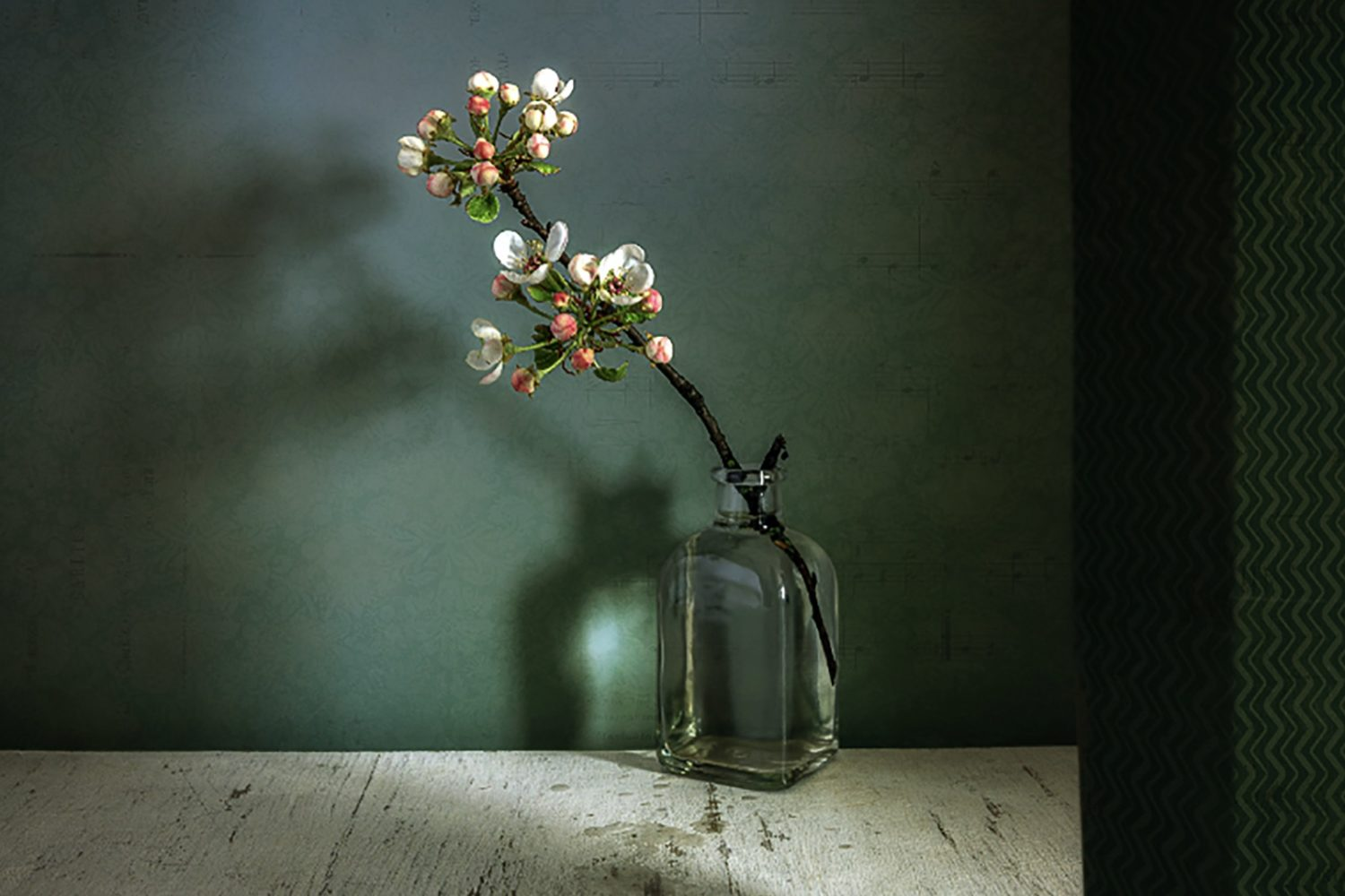 Still life photography: The essential guide for photographers