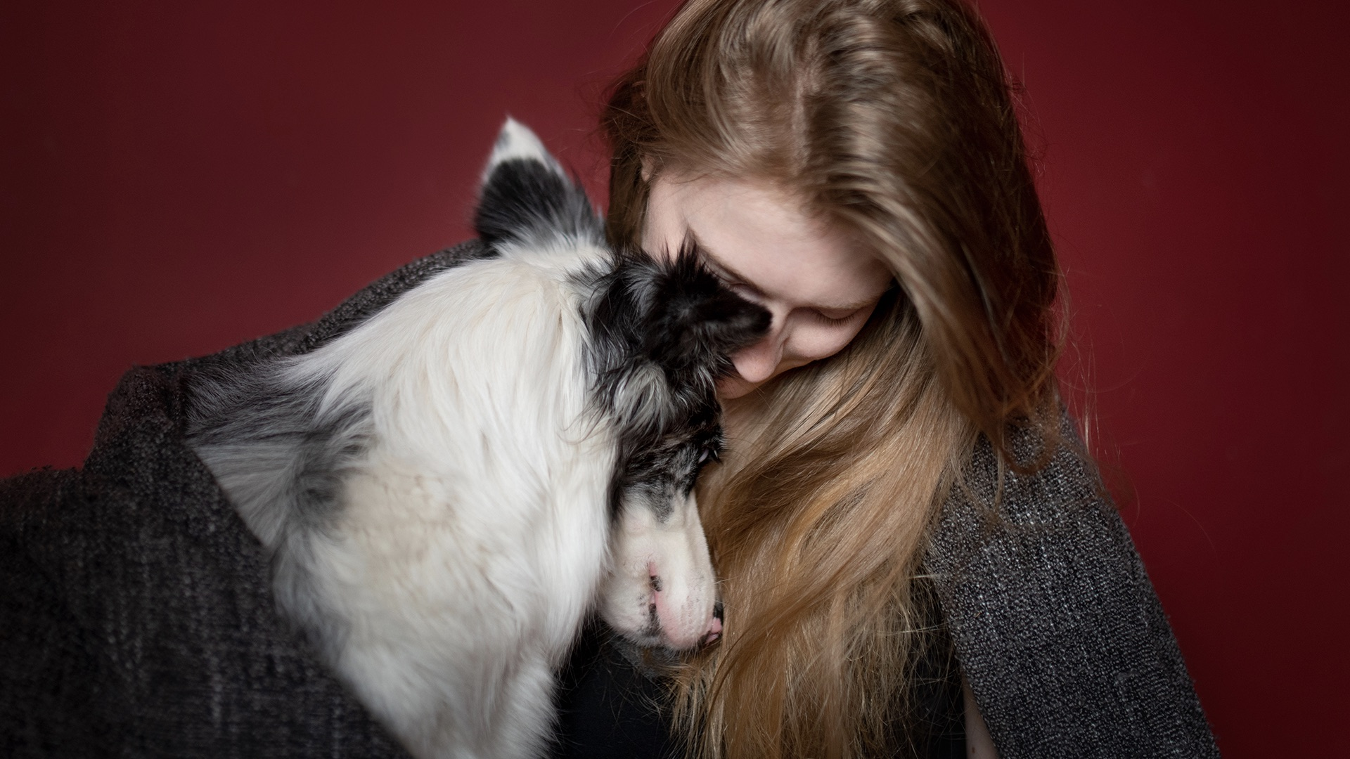 Licensing Contributor Iza Lyson on photographing dogs