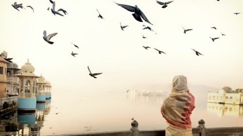 A woman in sari watching the sunrise in Udaipur lake