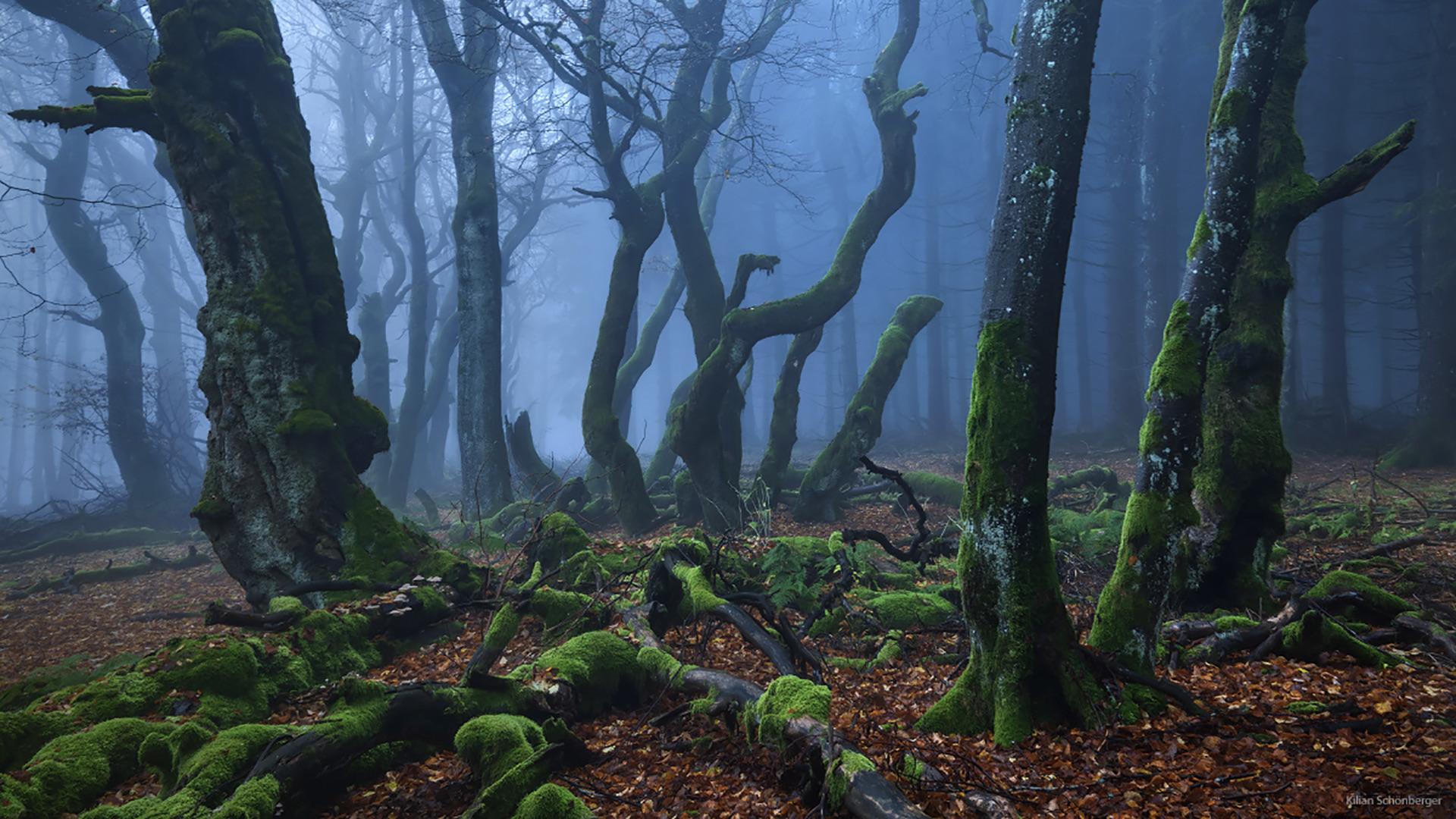 Landscape photos | 15 stunning landscape photos on 500px