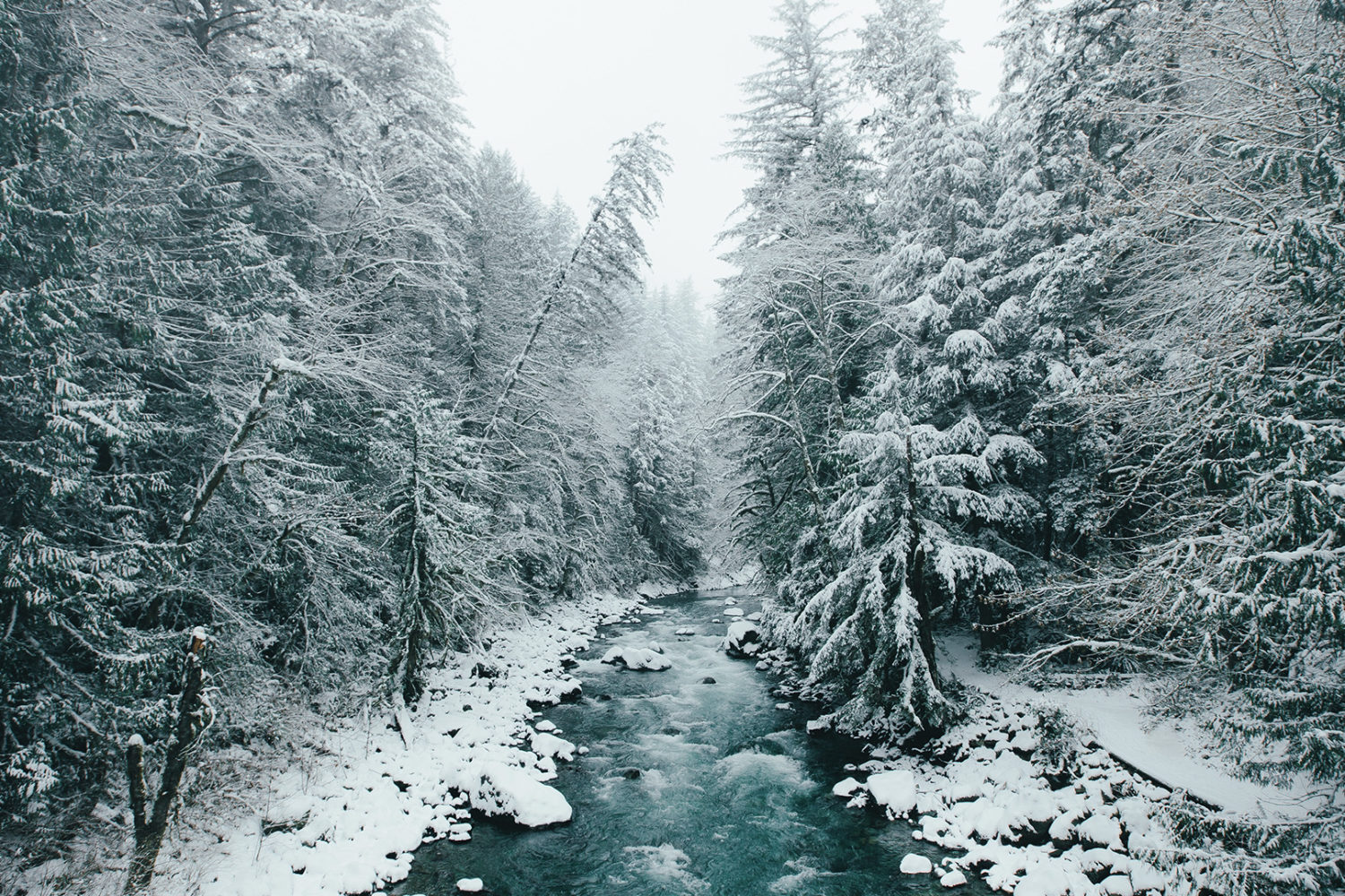 Nine must-have tips for better winter photography